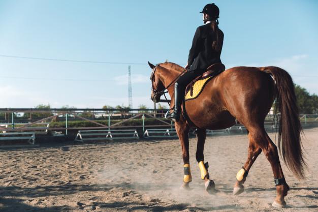 Equitation Calories BodySano
